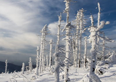 | Szczyrk | Zimowe spacery |