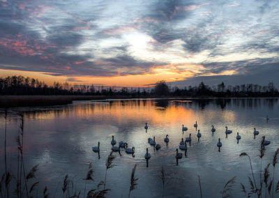 | Dolina Soły | Jezioro Łabędzie |